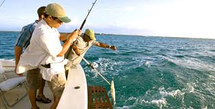 sport fishing in bimini the out islands of the bahamas