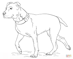 ready to print pitbull coloring pages animal pitbull coloring