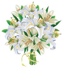 lilies flowers white lilies flowers bouquet png clipart image gallery