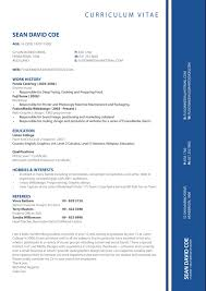 Resume Layout Samples by Resume Format Tips Cipanewsletter Resume Format Tips Tips For