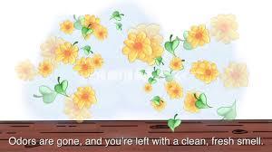 folex professional 34 oz deodorizing hardwood floor cleaner