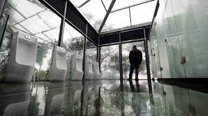 glass washrooms in china offer stunning forest views cnn travel