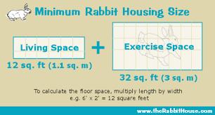Make Rabbit Hutch Planning A Homemade Rabbit Cage