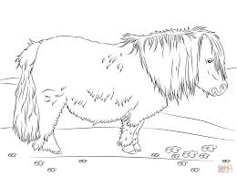 coloring detailed horse coloring pages