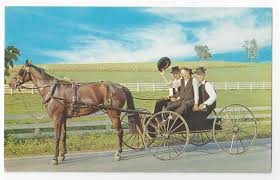 amish courting buggy young men pennsylvania dutch country vintage