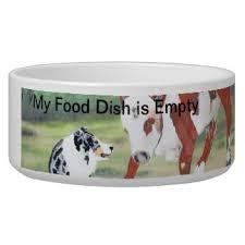 australian shepherd dog food australian shepherd dog pet bowls dog bowls u0026 cat bowls zazzle