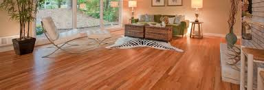 buff and re coat hardwood floors service nc majestic