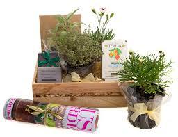 garden gift basket gardening gift basket mothers day garden