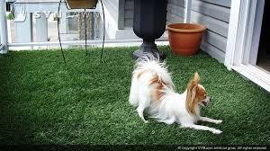 Dog Patio Synlawn Dog U0026 Pet Installations Synlawn Of Canada