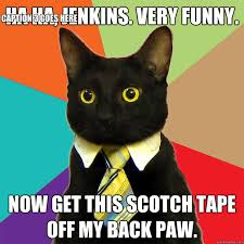 ha ha jenkins very funny cat meme cat planet cat planet