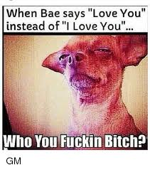 I Love You Bae Meme - when bae says love you instead of i love you who you fuckin bitch