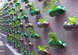 Basic Garden Ideas Garden Ideas And Basic For Getting Started Po Co