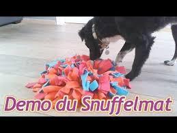 comment cuisiner du chien diy comment fabriquer un snuffle mat pour votre chien tutoriel