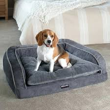 costco pet beds dog sofa bed costco korrectkritterscom