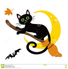 halloween cats background cute black cat flying on a broom halloween stock vector image