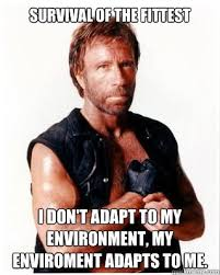 Survival Memes - survival of the fittest i don t adapt to my environment my