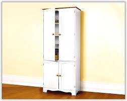 white kitchen pantry cabinet home design ideas