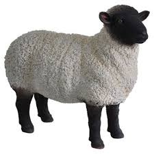 buy real black white sheep ornament from our garden ornaments