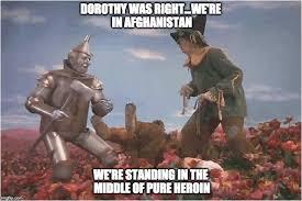 Yoda Meme Generator - wizard of oz meme generator pretty photos just trifling these hoes