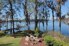 Odessa Florida Map by Coldwell Banker Residential Real Estate Odessa Fl