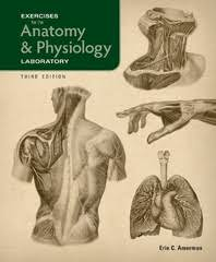 Fundamentals Of Anatomy And Physiology Third Edition Study Guide Answers Exercises For The Anatomy U0026 Physiology Laboratory 3rd Edition