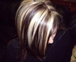 blonde bobbed hair with dark underneath short blonde hair with brown underneath brown hairs