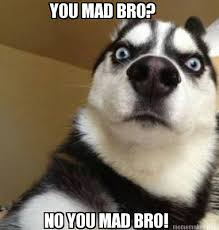 You Mad Bro Meme - you mad bro meme by skylarkittyartist on deviantart