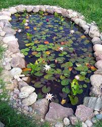 Small Water Ponds Backyard 35 Impressive Backyard Ponds And Water Gardens Fish Ponds Fish