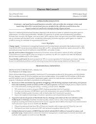 Sample Executive Resumes by Sample Executive Resumes Resume For Your Job Application