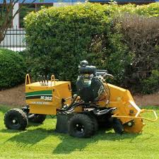 stump grinder rental near me rental catalog