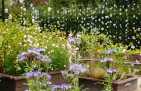 Glow In The Dark Lights Make Your Garden Glow With Solar Lights And Glow In The Dark Paint