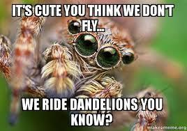 23 Funny Spider Memes Weneedfun - spider memes