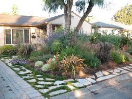 Drought Friendly Landscaping by Plantworld Before And After Photos Alamo Residence Drought