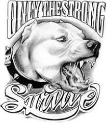 only the strong survive pitbull tattoo pinterest tatting and