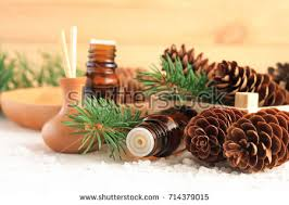 scented stock images royalty free images vectors