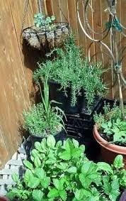 Garden Ideas For Small Spaces Garden Design Ideas For Small Spaces The Micro Gardener