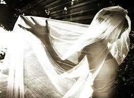 professional wedding photography professional wedding photography gorgeous veil and shadow photo