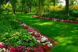 Shady Backyard Landscaping Ideas Landscaping Plants For Shade Ideas Designs Pictures