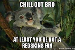 Chill Out Bro Meme - chill out bro at least you re not a redskins fan laid back koala