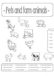 pets and farm animals number and colour
