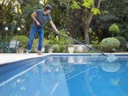 Mosquito Backyard Best 25 Mosquito Control Products Ideas On Pinterest Insect