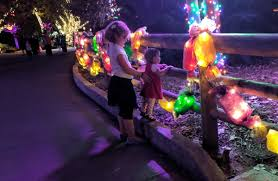 zoo lights houston 2017 dates houston zoo lights 2017 beat the crowds at houston s popular