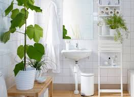 How To Decorate Your Bathroom Like A Spa - 8 u0027shower plants u0027 that want to live in your bathroom treehugger