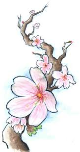 35 best cherry blossom drawing tattoo idea images on pinterest