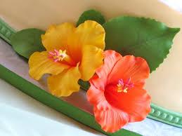 gumpaste hibiscus video tutorial u2013 renee conner cake design