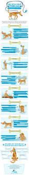 best 20 dog behavior ideas on pinterest u2014no signup required dog