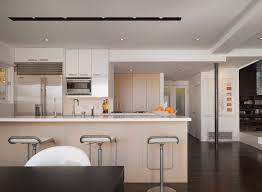 los angeles modern vinyl flooring kitchen with wood cabinets