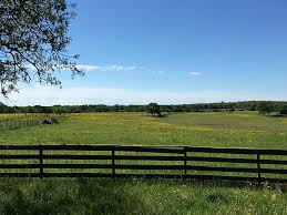 314 best fencing images on 431 county road 314 caldwell tx 77836 har com
