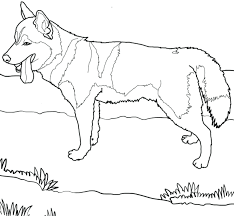 articles with coloring pages cute dogs tag coloring page of dogs