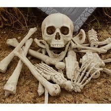 popular halloween skeletons buy cheap halloween skeletons lots